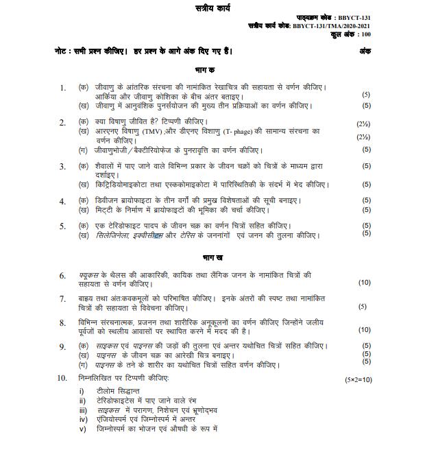 ignou assignment bbyct 131 hindi 2020-21