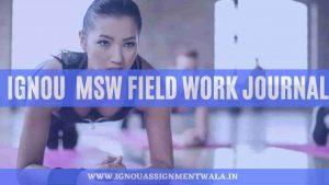 IGNOU  MSW field work journal
