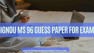 IGNOU MS 96 GUESS PAPER FOR EXAM