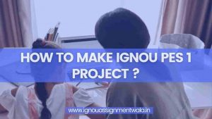 Read more about the article HOW TO MAKE IGNOU PES 1 PROJECT ?