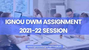 Read more about the article IGNOU DWM ASSIGNMENT 2021-22 SESSION