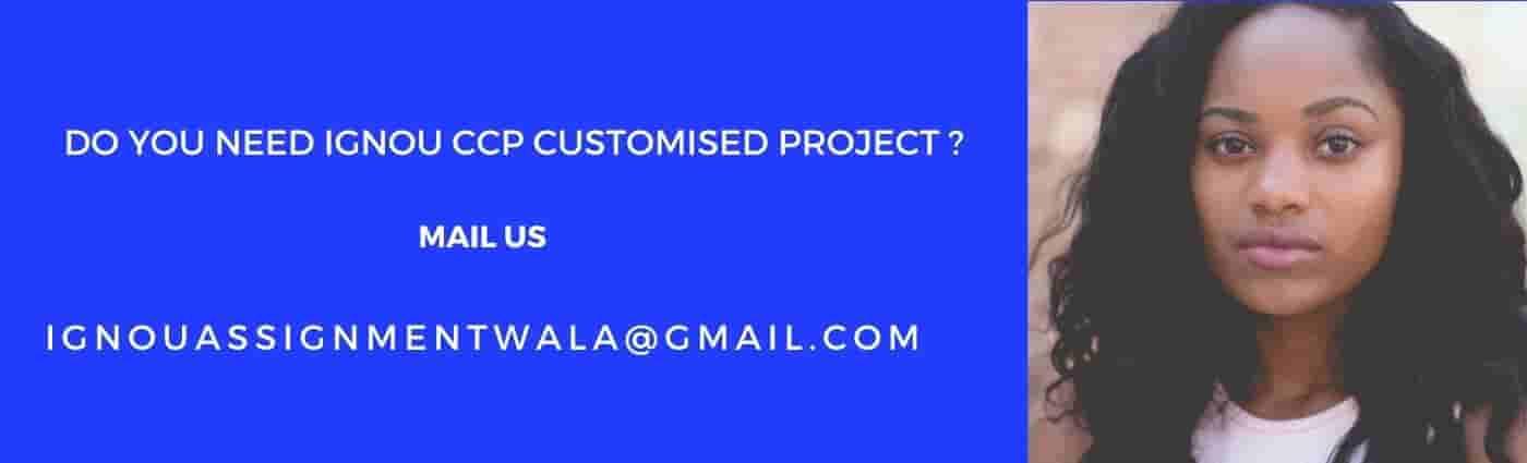 ignou ccp project report